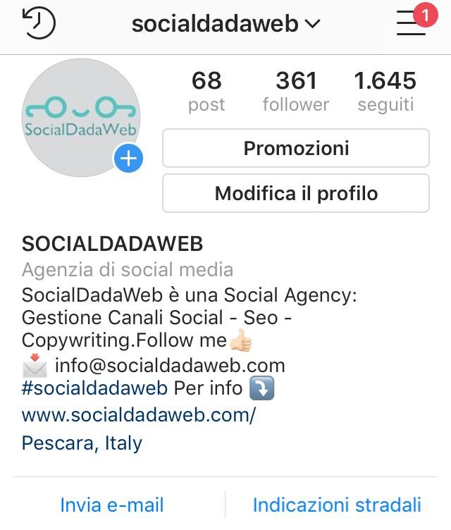 Biografia della pagina Instagram di SocialDadaWeb